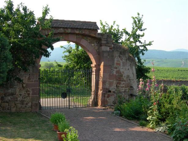 portail gite Mittlewihr proche de colmar et riquewihr au coeur vigne alsace